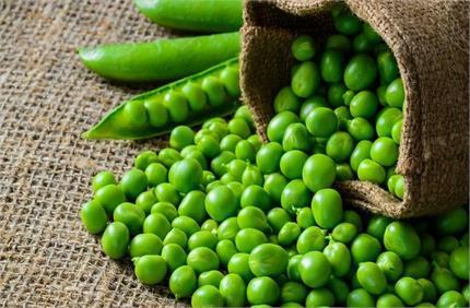दिल के लिए बढ़िया है हरी मटर, जानिए और भी जबरदस्त फायदे
