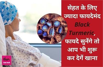 पीली नहीं, काली हल्दी सेहत के लिए ज्यादा फायदेमंद, कैंसर तक के इलाज...