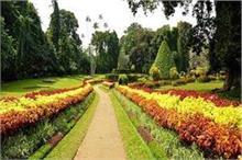 गुलाब के दीवाने जरूर बनाएं चंडीगढ़ के इस गार्डन में घूमने का...