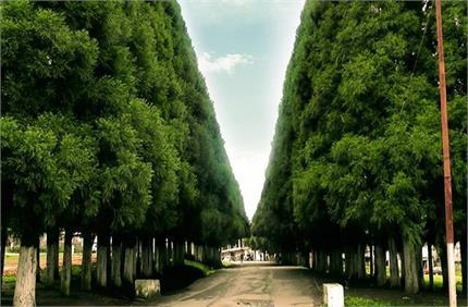 भारत में है एशिया का सबसे स्वच्छ गांव, माना जाता है 'भगवान का अपना...