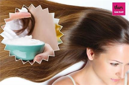 घर पर बनाएं केमिकल फ्री कंडीशनर, पतले बाल भी बनेंगे घने और खूबसूरत