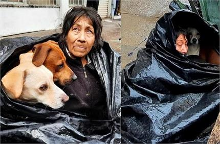 दोस्तों की अनोखी मिसालः नहीं छोड़ा कुत्ते का साथ, कचरे के बैग को...