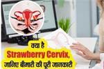 महिलाओं को क्यों हो रही Strawberry Cervix की समस्या, इलाज में देरी बन...