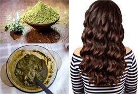 बालों में ऐसे लगाएं 'हरी मेहंदी', रंग भी चढ़ेगा और...