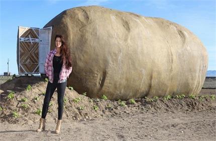 यहां आलू के अंदर रहते हैं लोग, देखिए 'Potato House' का अनोखा नजारा