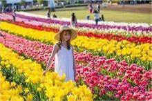 दो साल बाद खुला एशिया का सबसे बड़ा 'Tulip Garden', पीएम...