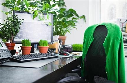 World Earth Day: धरती को बचना है तो घर ही नहीं ऑफिस में भी लगाएं पौधे