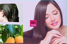 No Side Effect: आम की पत्तियों से पाएं नेचुरल काले बाल,...
