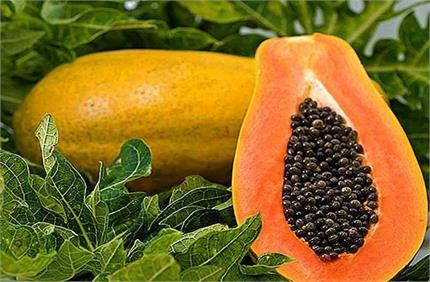 Kitchen Tips: घर पर आसानी से पकाएं कच्चा पपीता, बाजार से भी होगा...