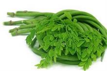 मल्टीविटामिन से भरपूर सहजन की सब्जी इम्यूनिटी बढ़ाने के साथ...