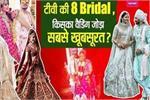 दीपिका कक्कड़ से रुबीना दिलाइक तक, TV की इन Brides ने पहनी महंगे से...