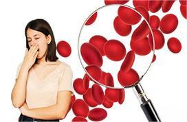 Iron Deficiency Anemia: खून की कमी पूरी कर देंगे ये 5 आहार,...