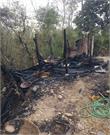 डाडासीबा की पशुशाला में जिंदा जल गई गाय