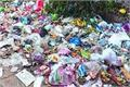 polythene visible dumping centers experiment not stopped
