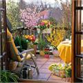 give the balcony a garden look follow these easy tips