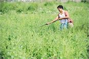 agricultural export policy will come soon