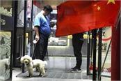 china city curbs dog walking bans them in parks stadiums
