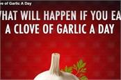 what will happen if you eat a clove of garlic a day