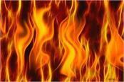 aurangabad 22 houses burnt to death due to sudden fire 3 dead