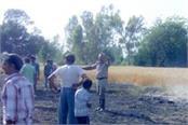 fire in crop