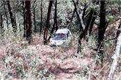 when the car stuck between the trees in the ditch 4 young people survived