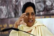 now mayawati will bring the choupal in villages truth of bjp s dalit love