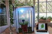 automatic garden to start growing different plants at this time