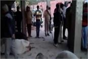 vandalism 17 cows got scorched by acid in agra rage in villagers