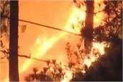 the forest of uttarakhand has been blazing for the past 5 days