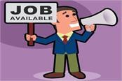 mavim job salary candidate