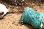 dead body thrown in a woman and boy s sack sensation spread in the area