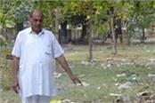 bad cleaning of durbarganj