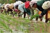 anti farmer is modi government