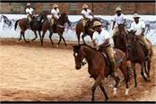 up police horse riding 250 horse riding 100