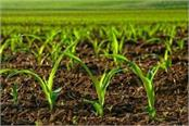 agricultural production can fall from the normal monsoon to normal