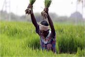 msp hike adoption of apmc act to help double farmers  income