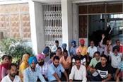 punjab university teacher protest