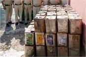 busted of precious forest land smuggling