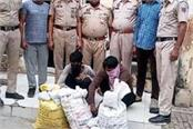 driver and cleaner arrested for hiding drugs in a truck
