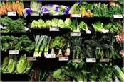abundance of foreign vegetables in the market farmers are getting rich