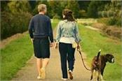 pet owners who fail to walk their dogs face 2 700 fine