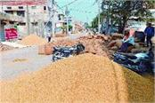 paddy inward swing market and paddy piles on road