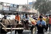 people took out funeral of dead cow