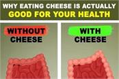why eating cheese is actually good for your health