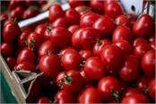 tomatoes supply started in pakistan but freight increases four times