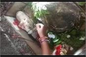 miracle or superstition nandi have milk rush crowd in temples