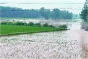 the condition of the villages has not improved even after the rain stopped