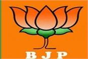 himachal bjp appointed election in charge in organizational districts