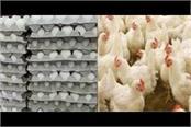 egg prices go up in haryana