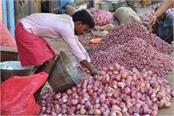 government has only 25 thousand tons of onion buffer stock left nafed